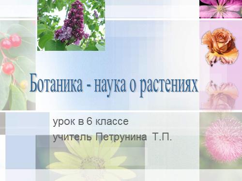 Ботаника — наука о растениях