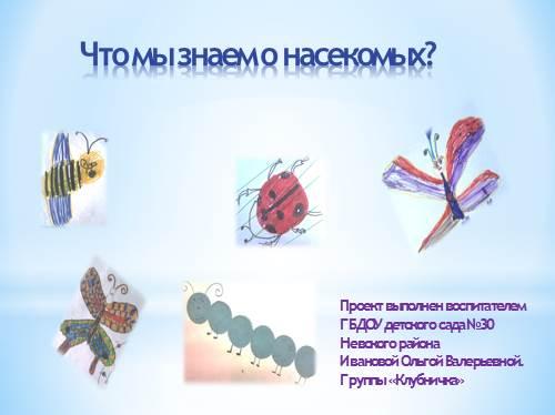 Что мы знаем о насекомых?