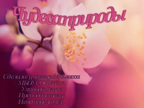 Чудеса природы в русской литературе