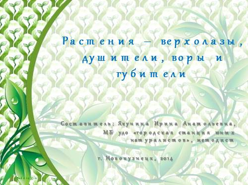 Флора и фауна Кузбасса