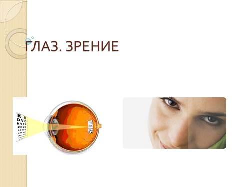 Глаз — Зрение