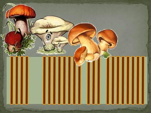 Грибы-растения или животные?