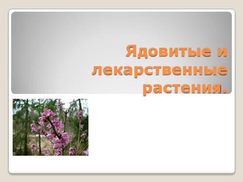 Ядовитые и лекарственные растения