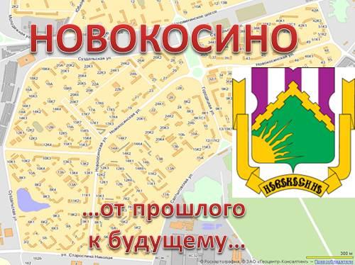 История района Новокосино г. Москвы
