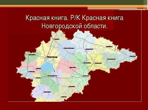 Красная книга Новгородской области