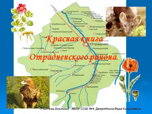 Красная книга Отрадненского района
