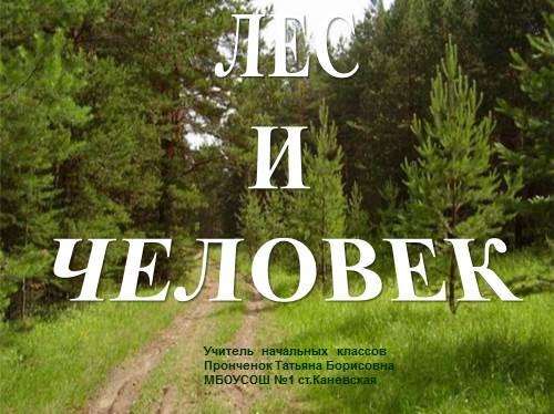 Лес и человек