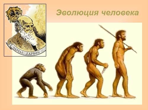 Первобытный мир — первые шаги человечества