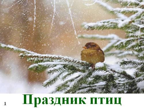 Презентция к празднику птиц — 1 апреля
