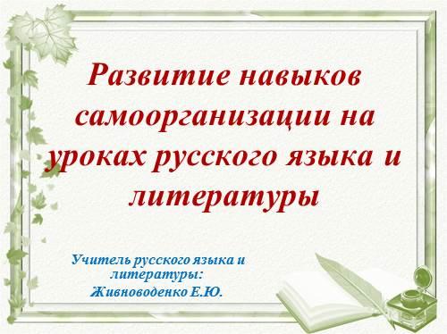 Развитие навыков самоорганизации на уроках русского языка и литературы
