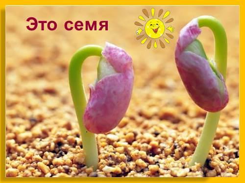 Снимает трусы много семени во рту