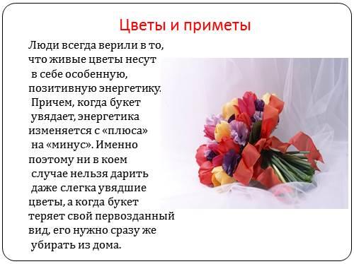 Приметы связанный с цветами и