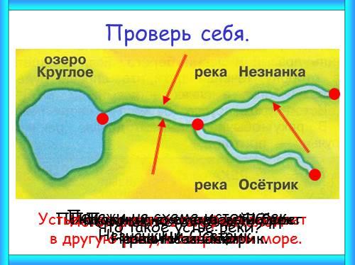 Покажи на схеме истоки рек