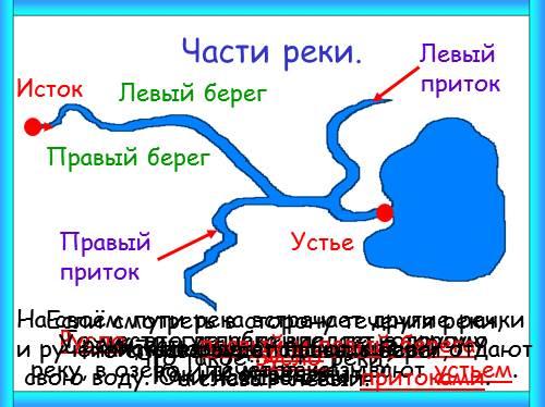 Исток Что такое устье реки?