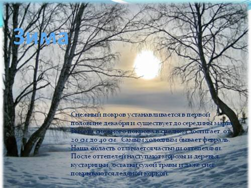 Картинки зимующих птиц в белгороде