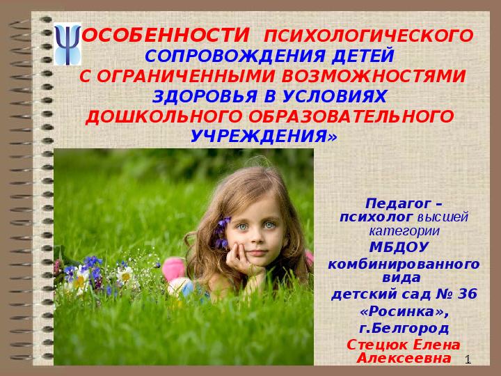 Сопровождение детей с ограниченными возможностями здоровья