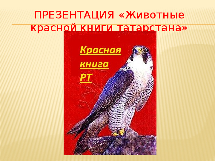 Скачать красная книга татарстана