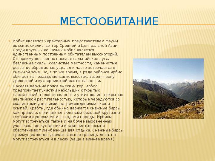 Презентация Красная Книга Татарстана Скачать