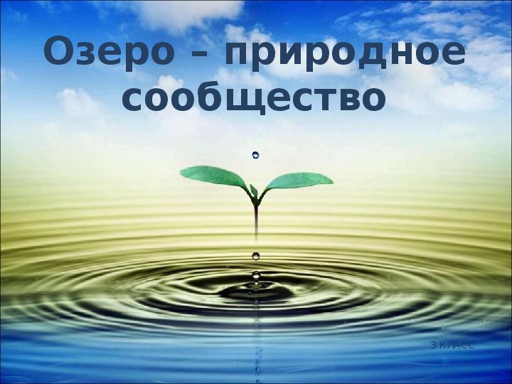 Презентация Озеро — природное сообщество