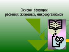 Презентация Основы селекции
