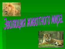 Презентация Эволюция животного мира