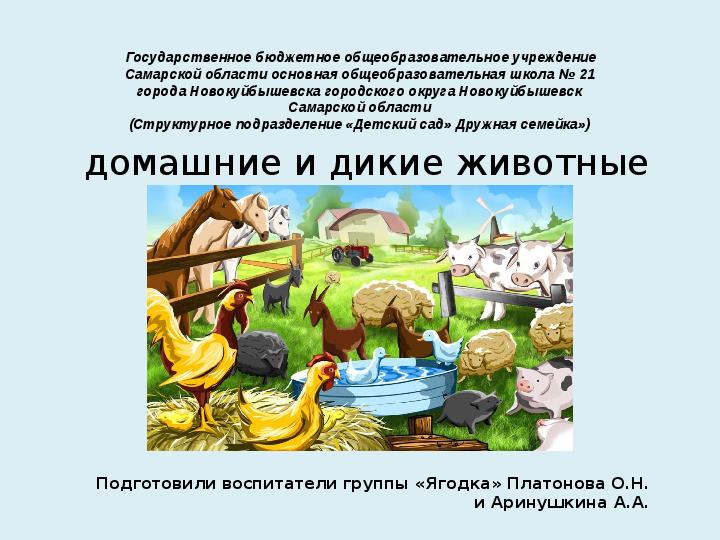 Презентация на тему «Дикие и домашние животные»