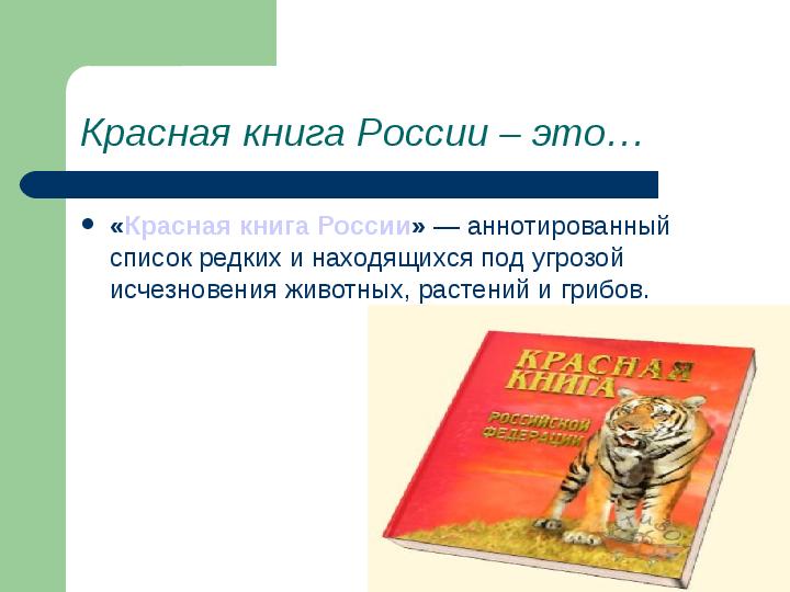 Презентация по английскому защиты животных — pic 7