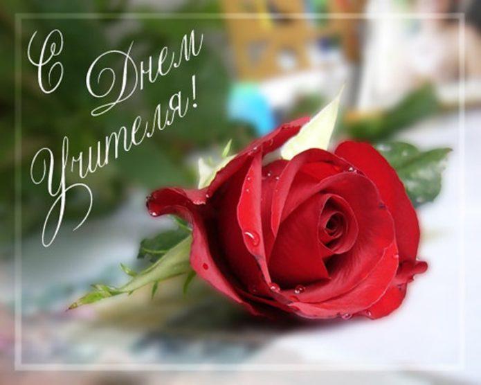 Изображение - Распечатать поздравление с днем учителя post_5baf2aeb2471a-695x556