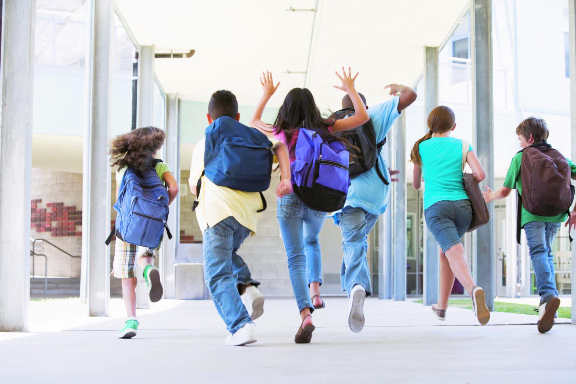 Готовим сани летом: что нужно сделать школьнику под конец учебного года