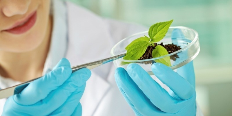 10 престижных профессий для любителей биологии