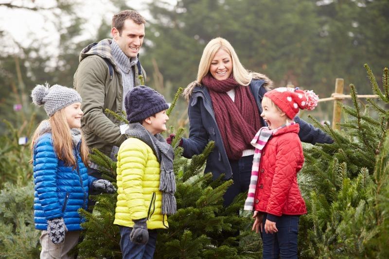 5 причин купить натуральную елку, если в доме ребенок